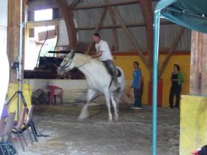 maigreux-cheval2-300x225 dans Les infos du moment